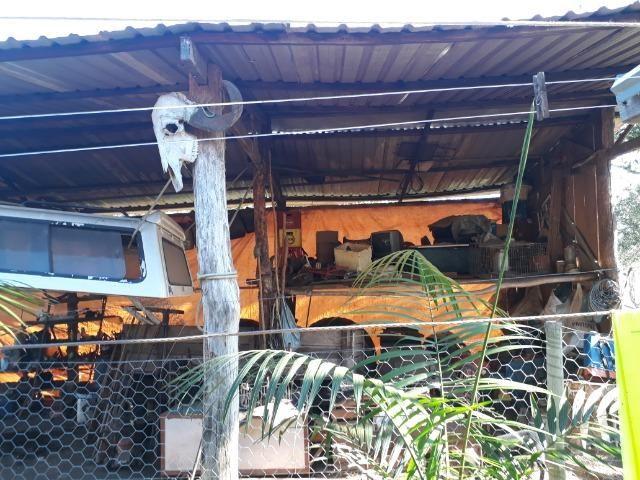 Chácara com caneiros, aves, tanque com peixes na BR 364 ha 30 km de Várzea Grande - Foto 14