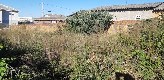 Terreno à venda em Pinheiro machado, Santa maria cod:10072 - Foto 5