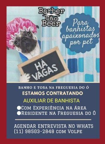Auxiliar de Banhista de Pet Shop