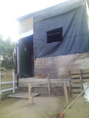 Vendo uma casa de madeira - Foto 3