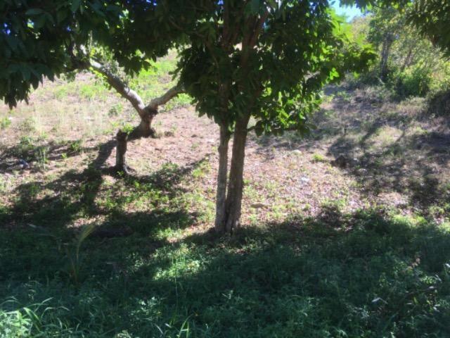 Terreno 18x12 Em Abreu e lima - Foto 3
