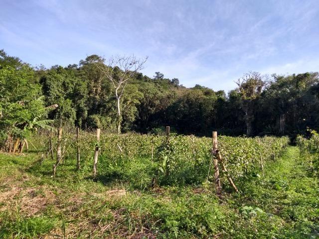 Área com 30 hectares com 600 metros de rio - Foto 16
