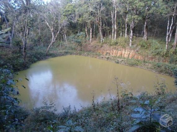 Chacara agudos do sul as margens pr 281 troco caminhao guincho munk - Foto 13