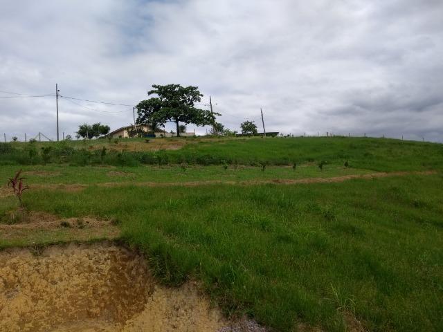 Chácara medindo 20 mil metros, com casa - Foto 4