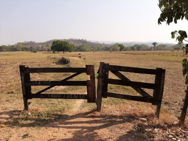 Chácara com 5 hectares na Agrovila das Palmeiras - Foto 2