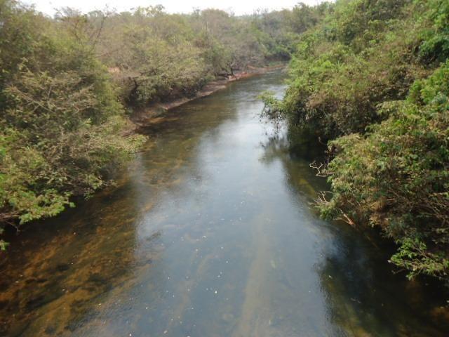3000 hectares,Paranatinga/MT, 50% Para Plantio Soja, Paranatinga/MT. Oportunidade - Foto 2