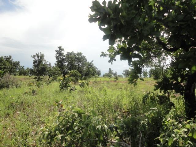 Sítio Chapada dos Guimarães 22 hectares - Foto 12