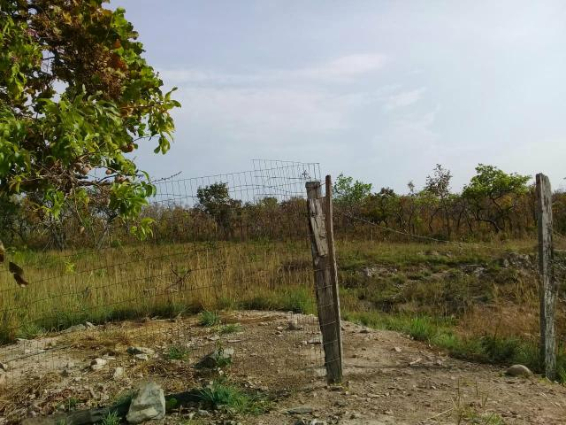 Chacara na regiao do aguacu - Foto 19