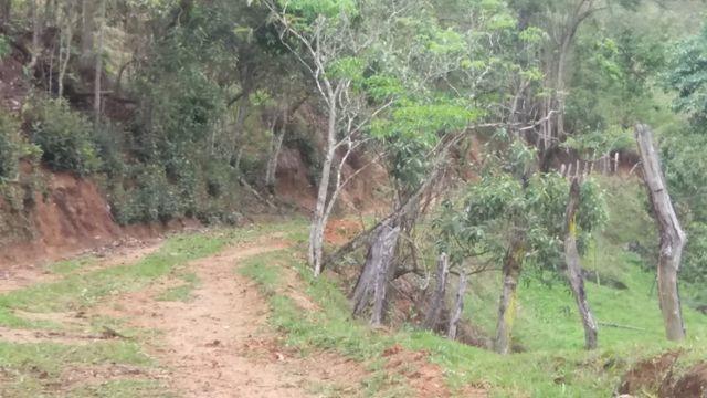 Serra de Japuíba Fazenda com 16 alqueires mineiros - Foto 3
