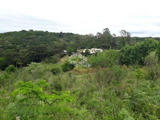 Chácara à venda com 1 dormitórios em Santa barbara, Monte belo do sul cod:9929336 - Foto 6