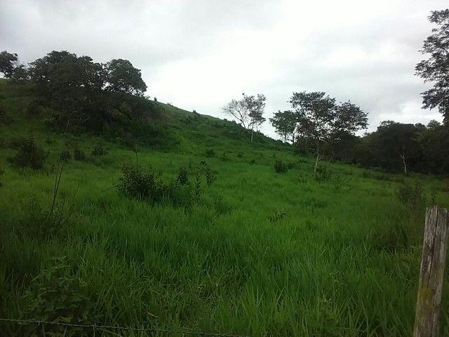 Fazenda alagoinhas arrendamento - Foto 2