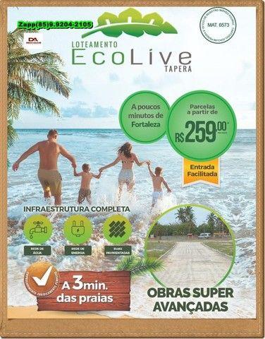 Loteamento EcoLive Tapera #@!#