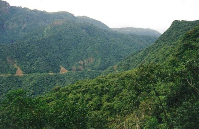 Fazenda de Reserva de Mata Atlântica - Paraná - Foto 2