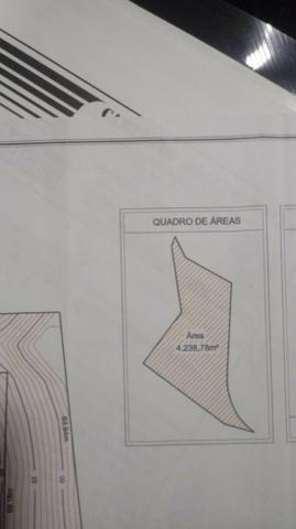 Terreno 4.238 m², B. Mario Giurizato, Margem BR 259 - Foto 10