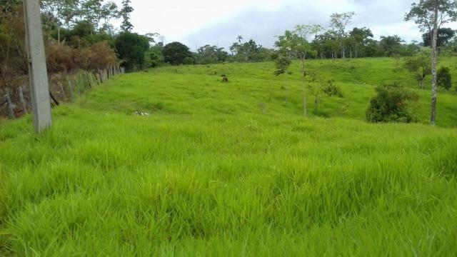 Fazenda em Porto Acre 35 km de Rio Branco - Foto 4
