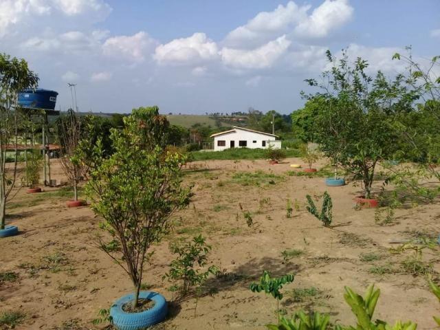 Sítio à venda com 4 dormitórios em Cachoeirinha, Divinopolis cod:20083 - Foto 20