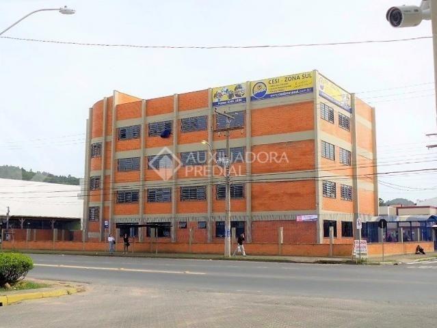 Terreno à venda em Hípica, Porto alegre cod:287085 - Foto 8