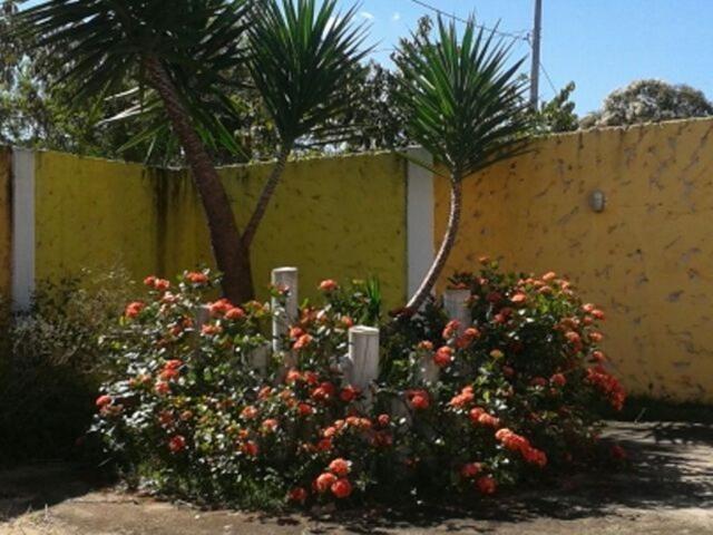 Chácara à venda com 3 dormitórios em Ermida, Divinopolis cod:18321 - Foto 2