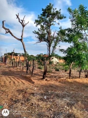 Vendo Terreno de esquina medindo 30 x 50 m em T. Lagoas.Ms - Foto 6