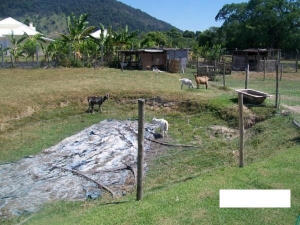 Código:36 Excelente sítio com 6000 m2 em condomínio fechado próximo ao Centro de Maricá co - Foto 3