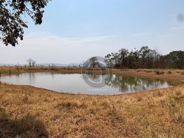 Fazenda 95 ha região chapada dos guimarães - Foto 10
