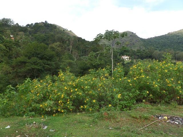 064 - Área de Terras nas Montanhas - Teresópolis - R.J - Foto 3
