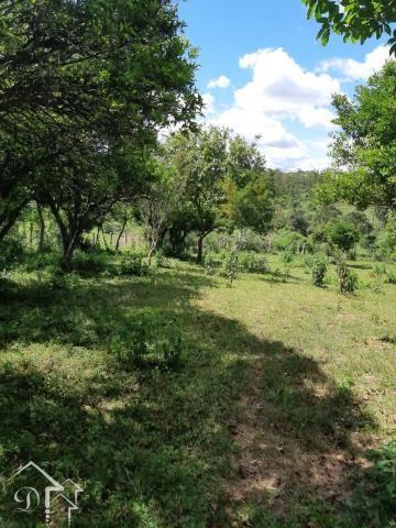 Chácara à venda com 2 dormitórios em Zona rural, Santa maria cod:10080 - Foto 9