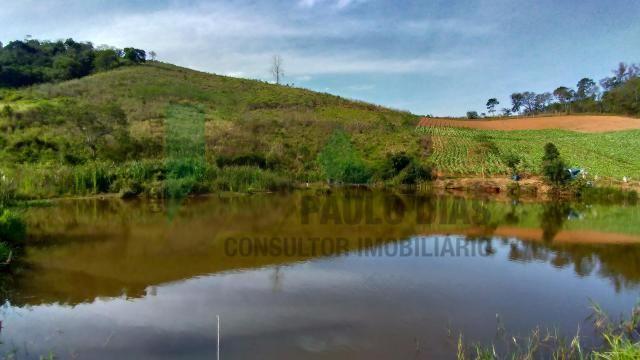 Ótima oportunidade para quem procura um terreno para formação de sitio em Pinhalzinho, Int - Foto 6