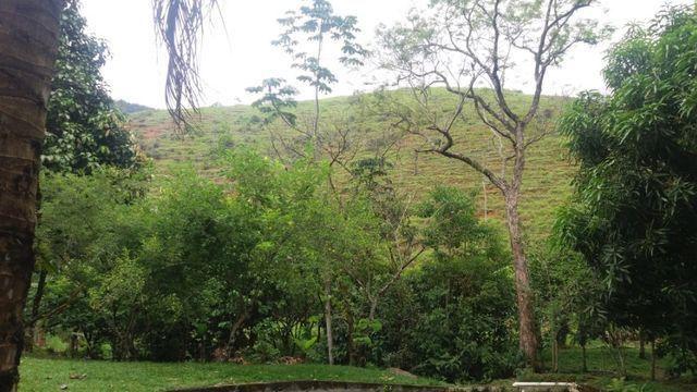 Serra de Japuíba Fazenda com 16 alqueires mineiros - Foto 20
