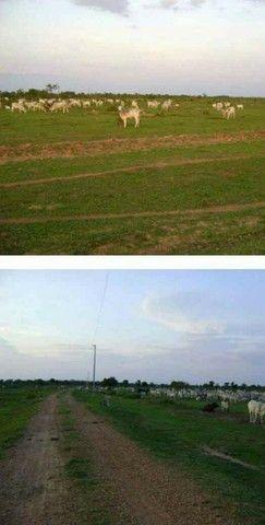 VENDA | Fazenda, em ZONA RURAL, Alto Boa Vista - Foto 16