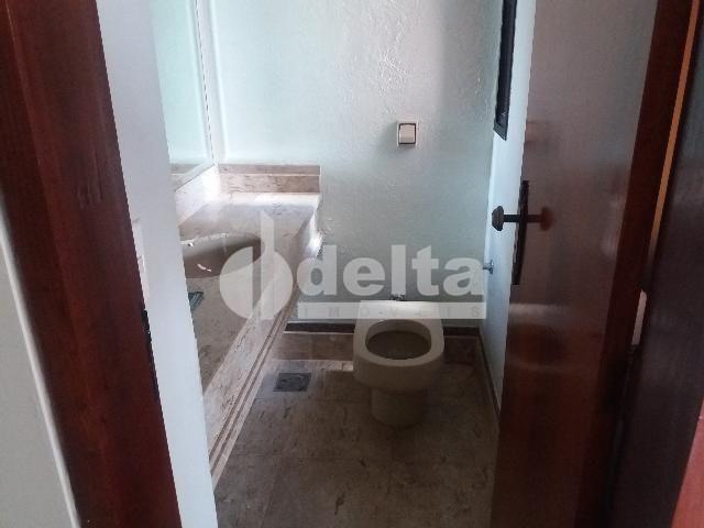 Apartamento para alugar com 3 dormitórios em Centro, Uberlandia cod:572064 - Foto 14