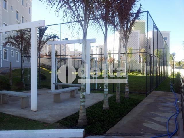 Apartamento à venda com 2 dormitórios em Shopping park, Uberlandia cod:33306 - Foto 3