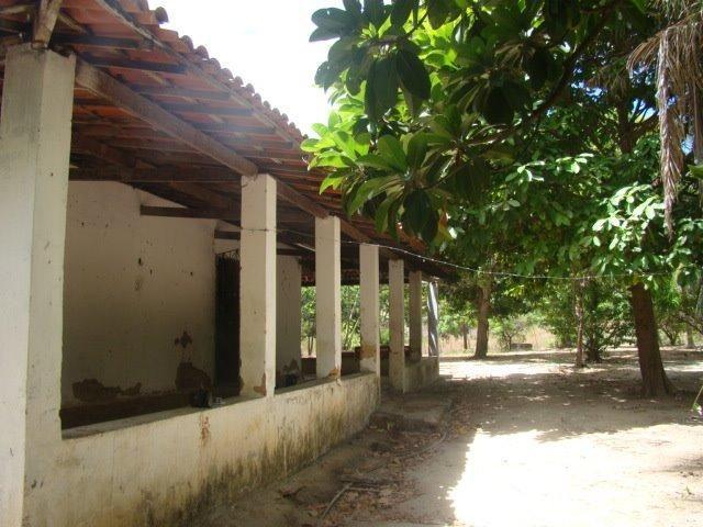 Sítio em Pacatuba, Ceará, Região Metropolitana de Fortaleza - Foto 9