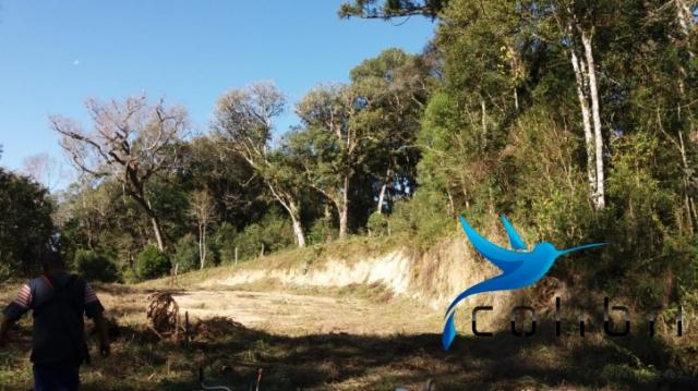 Terreno para formar chácara de lazer em Agudos do Sul - PR - Foto 7