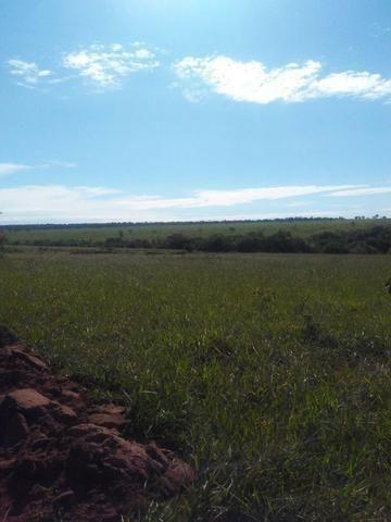 Terra para lavoura 30 km de Campo Grande - Foto 8