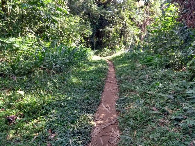 Área com 30 hectares com 600 metros de rio - Foto 2