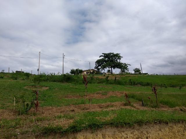 Chácara medindo 20 mil metros, com casa - Foto 7