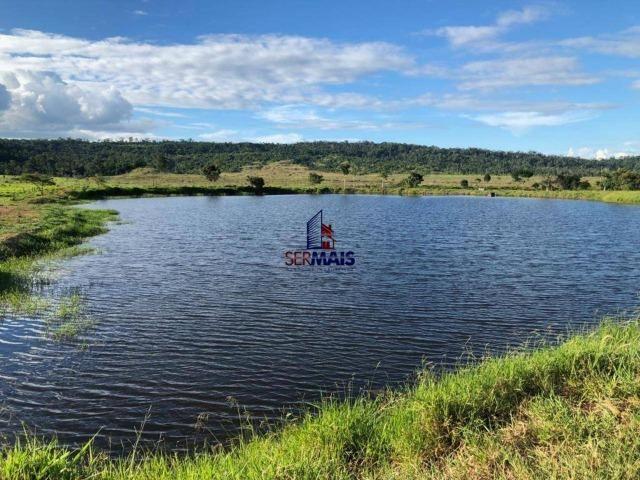 Fazenda à venda, por R$ 18.000.000 - Zona Rural - Ji-Paraná/RO - Foto 4