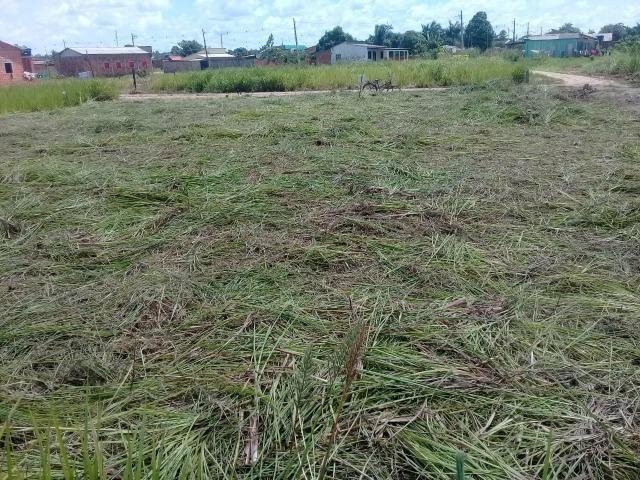 Vendo 2 terrenos de esquina na Vila Acre rodovia ac 40 - Foto 2