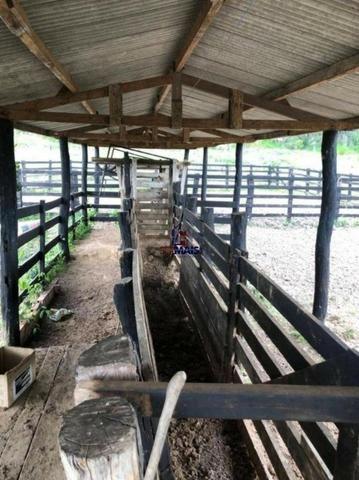 Fazenda à venda, por R$ 18.000.000 - Zona Rural - Ji-Paraná/RO - Foto 15