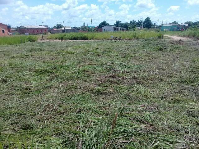 Vendo 2 terrenos de esquina na Vila Acre rodovia ac 40
