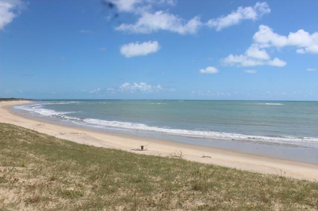 Excelente terreno beira mar na praia de Monte Alegre - TE0019 - Foto 8