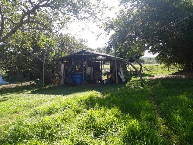 Chácara com caneiros, aves, tanque com peixes na BR 364 ha 30 km de Várzea Grande - Foto 7