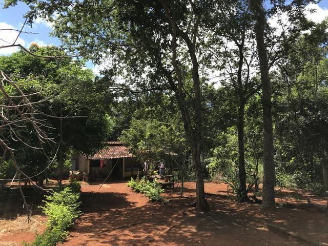 Vendo chácara em condomínio fechado lago dos cisnes, Felixlândia mg - Foto 6