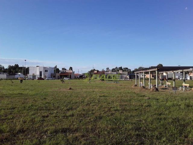 Terreno à venda, 175 m² por R$ 95.000,00 - Liberdade - Pelotas/RS - Foto 3