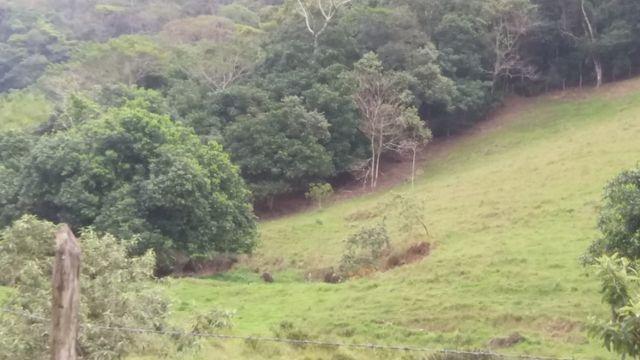Serra de Japuíba Fazenda com 16 alqueires mineiros - Foto 5