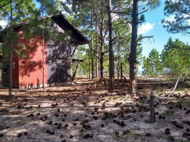 Linda casa em frente a Lagoa dos Patos Tavares RS - Foto 3