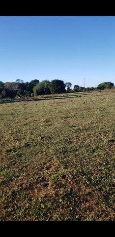 VENDA | Fazenda, em ZONA RURAL, Alto Boa Vista - Foto 8