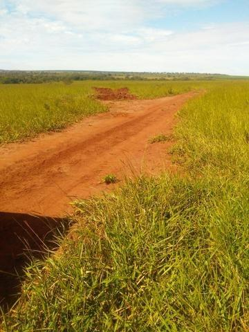 Terra para lavoura 30 km de Campo Grande - Foto 6
