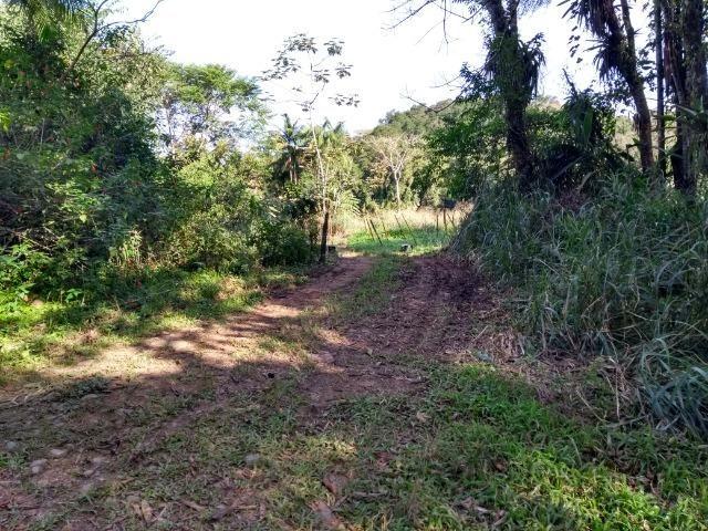 Área com 30 hectares com 600 metros de rio - Foto 13